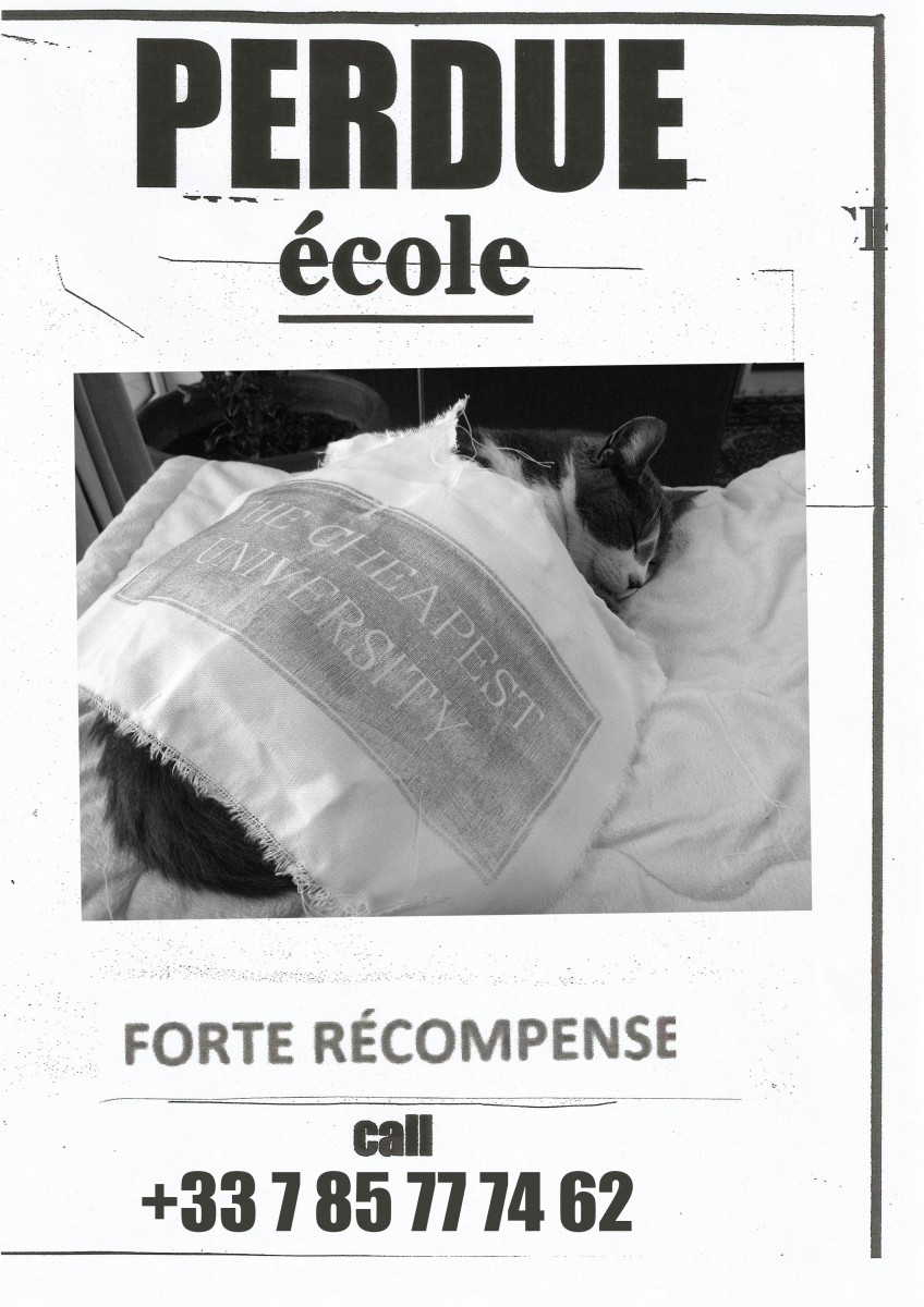 forterecompense_maxime-copie